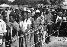 Timorese