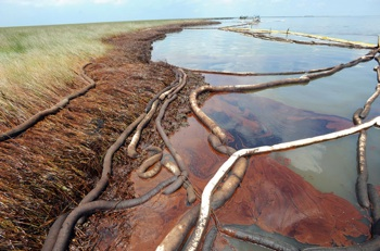 BP announced on June 1, 2010 that they were instituting a $20bn compensation fund to aid those affected by the oil spill, although residents complain they can't access the money. Photo: EPA