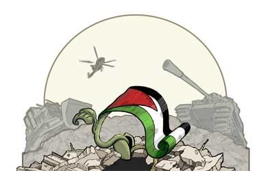 CByun_Palestine-Seed-Color1.jpg